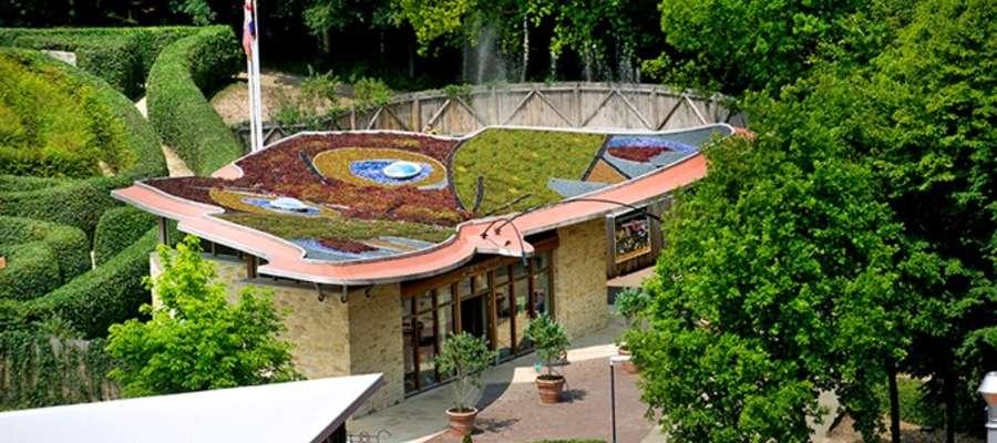 Naturalne trawniki na dachach
