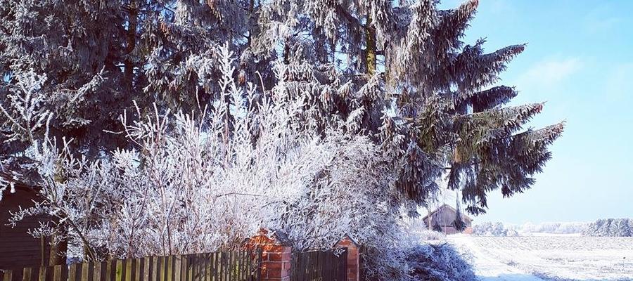 Zima w gospodarstwie ekologicznym w Łędławkach