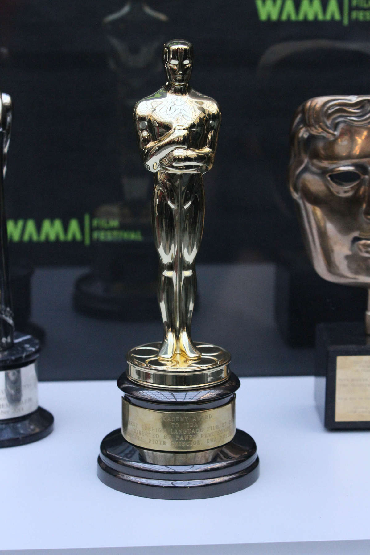 Oscar nie dla Twojego Vincenta, ale za to dla naszego Davida Malinowskiego - full image