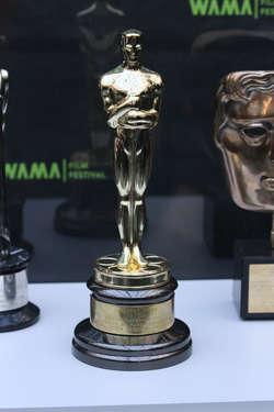 Oscar nie dla Twojego Vincenta, ale za to dla naszego Davida Malinowskiego