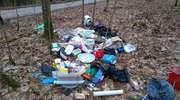 Wywiozła śmieci do lasu. Wpadła, bo wyrzuciła też polisę ubezpieczeniową
