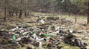 Pierwsze oznaki wiosny w lesie, to... wyrzucone butelki i odpady