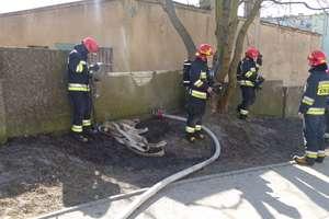 W Kazimierzowie spłonął jacht. W Elblągu strażacy gasili pożar pustostanu [ZDJĘCIA]