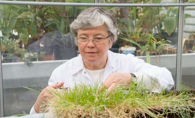 Irena Giełwanowska - profesor, która kocha rośliny, szczególnie te z Antarktyki