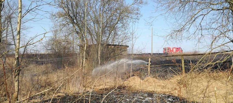 Gaszenie pożaru traw. W akcji OSP Spytkowo