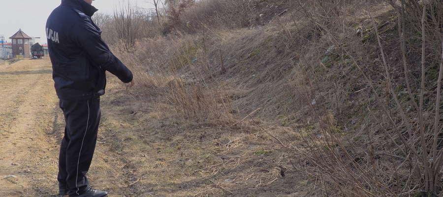 W tym miejscu znaleziono zmasakrowane ciało psa