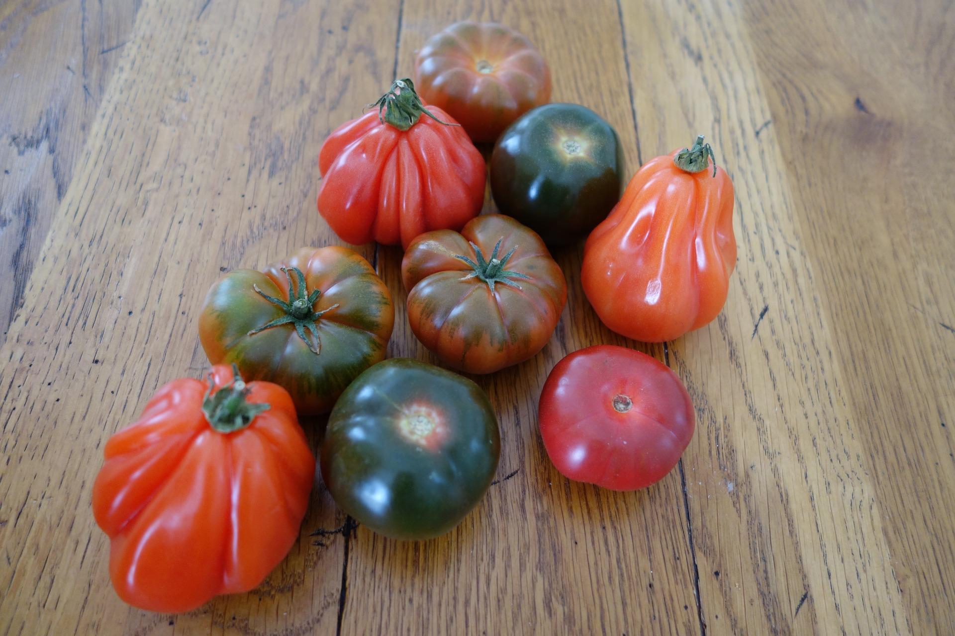 http://m.wm.pl/2018/04/orig/tomatoes-3311129-1920-460338.jpg