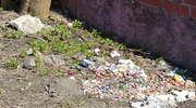 Śmieci i psie kupy na terenach zielonych to u nas wciąż codzienny widok...