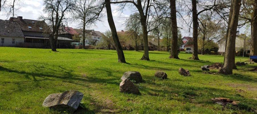 Do sadzenia drzew dojdzie w tym miejscu, przy ul. Lipowy Dwór