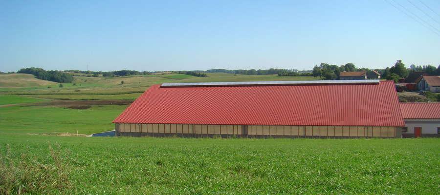 W ocenie rolników zmiany koniunktury w gospodarstwach, jakie miały miejsce w II półroczu ub. r., kształtowały się niekorzystnie. Pesymistyczne były również prognozy na I półrocze 2018 r.