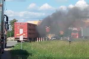 Ciężarówka z trzodą chlewną zapaliła się na drodze [VIDEO]