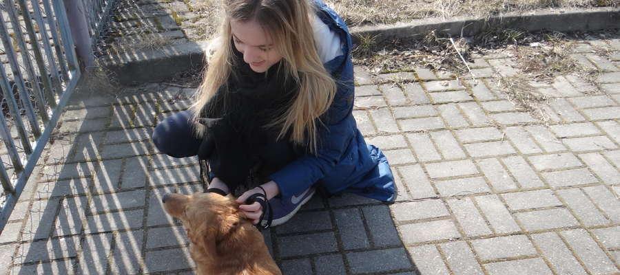29 kwietnia w Kiwitach odbyła się nietypowa sesja fotograficzna. Paweł Oleszczuk wykonał kilkadziesiąt zdjęć bezdomnym psom. Na zdjęciu Wiktoria Opalach