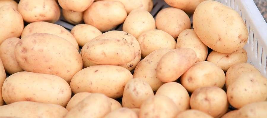 Sprzedawane ziemniaki będą musiały mieć na opakowaniu oznaczenie kraju pochodzenia