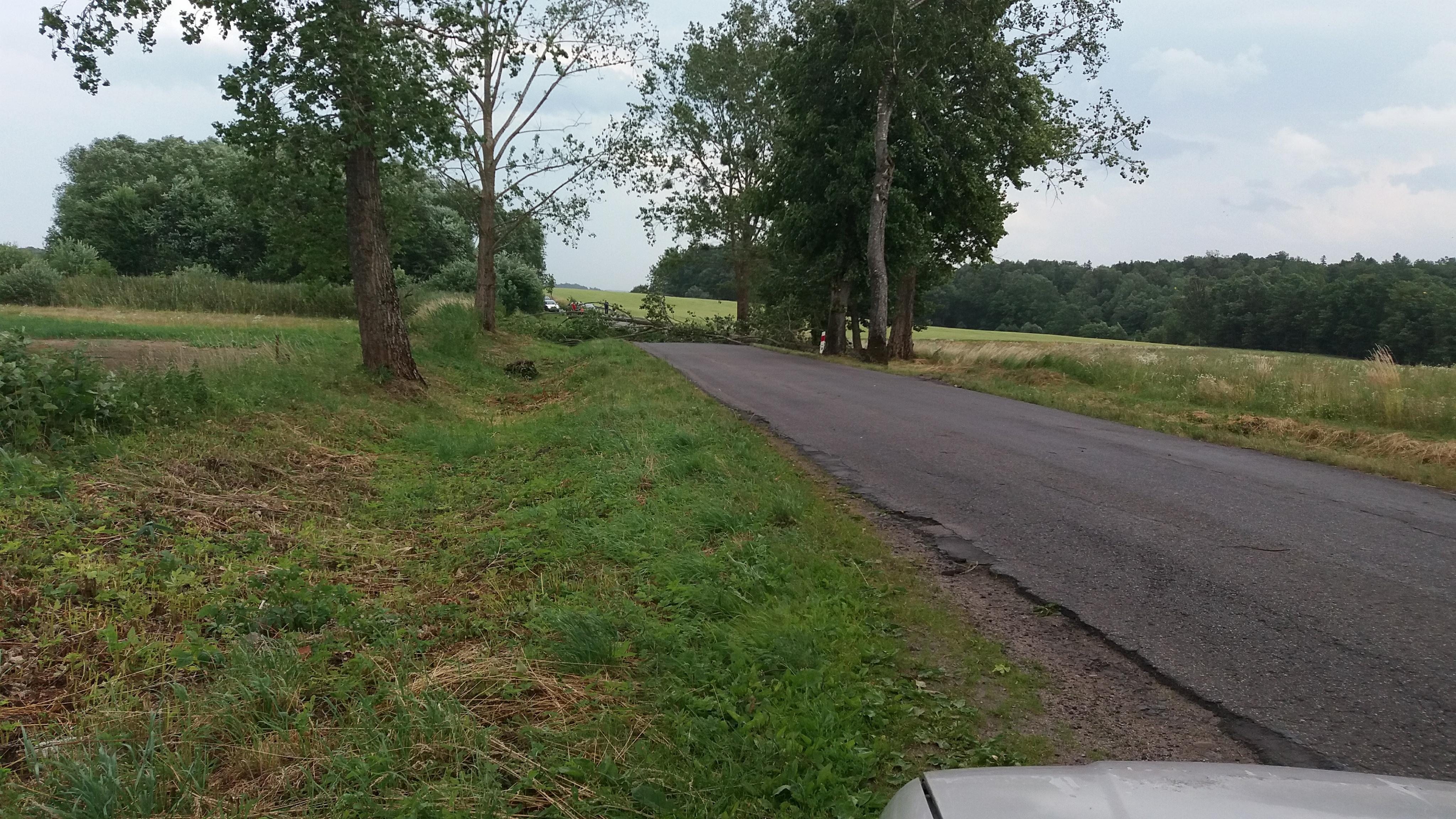 Drzewo zablokowało drogę Górowo Iławeckie - Bartoszyce