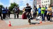 Braniewo najlepsze w Turnieju Miast Kopernikańskich [zdjęcia]
