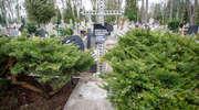 IPN zakończył śledztwo w sprawie tajemniczych ekshumacji w Elblągu