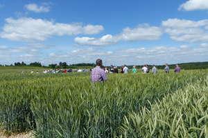 Wrócikowo zaprasza: Czerwiec w rolniczym roku