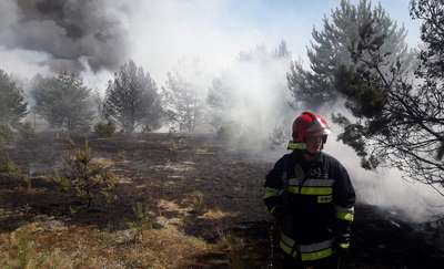 Ogromny pożar lasu na Osiedlu Wschód w Piszu
