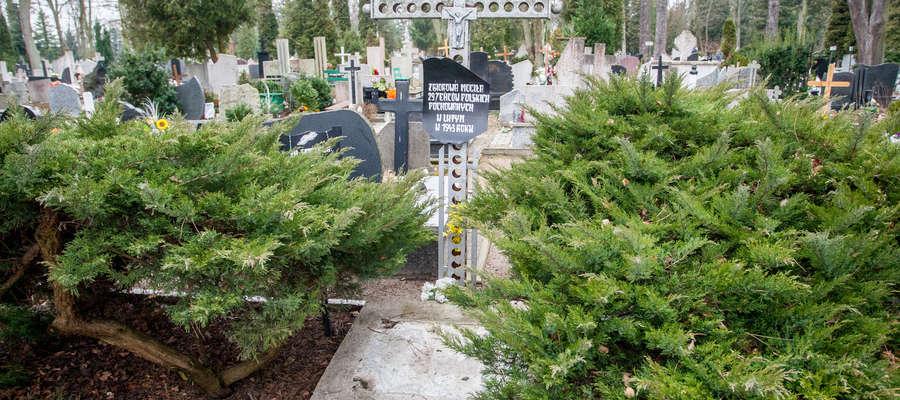 W Elblągu od kilku lat spekulowano, że osoby te pochowano w kwaterze jeńców wojennych na cmentarzu Agrykola