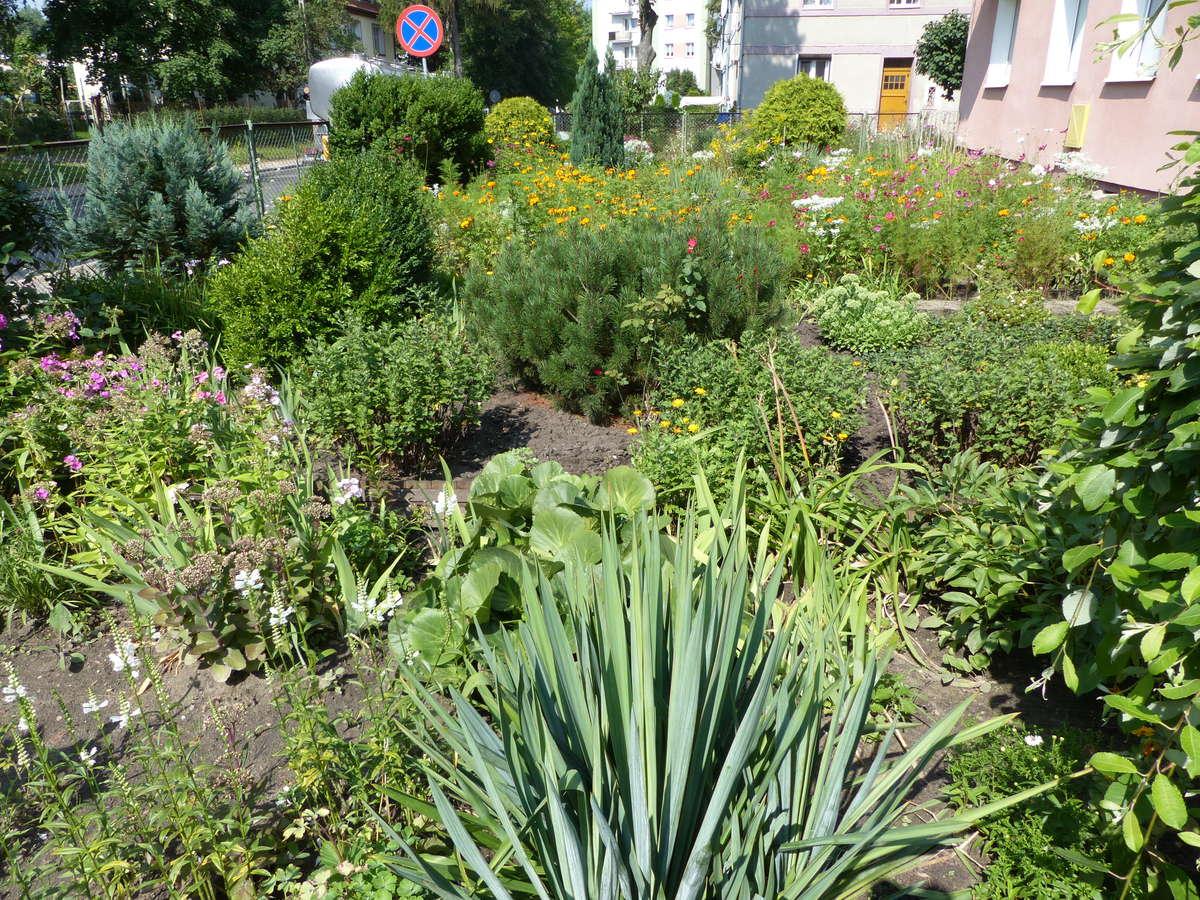 Ogród Zatorze