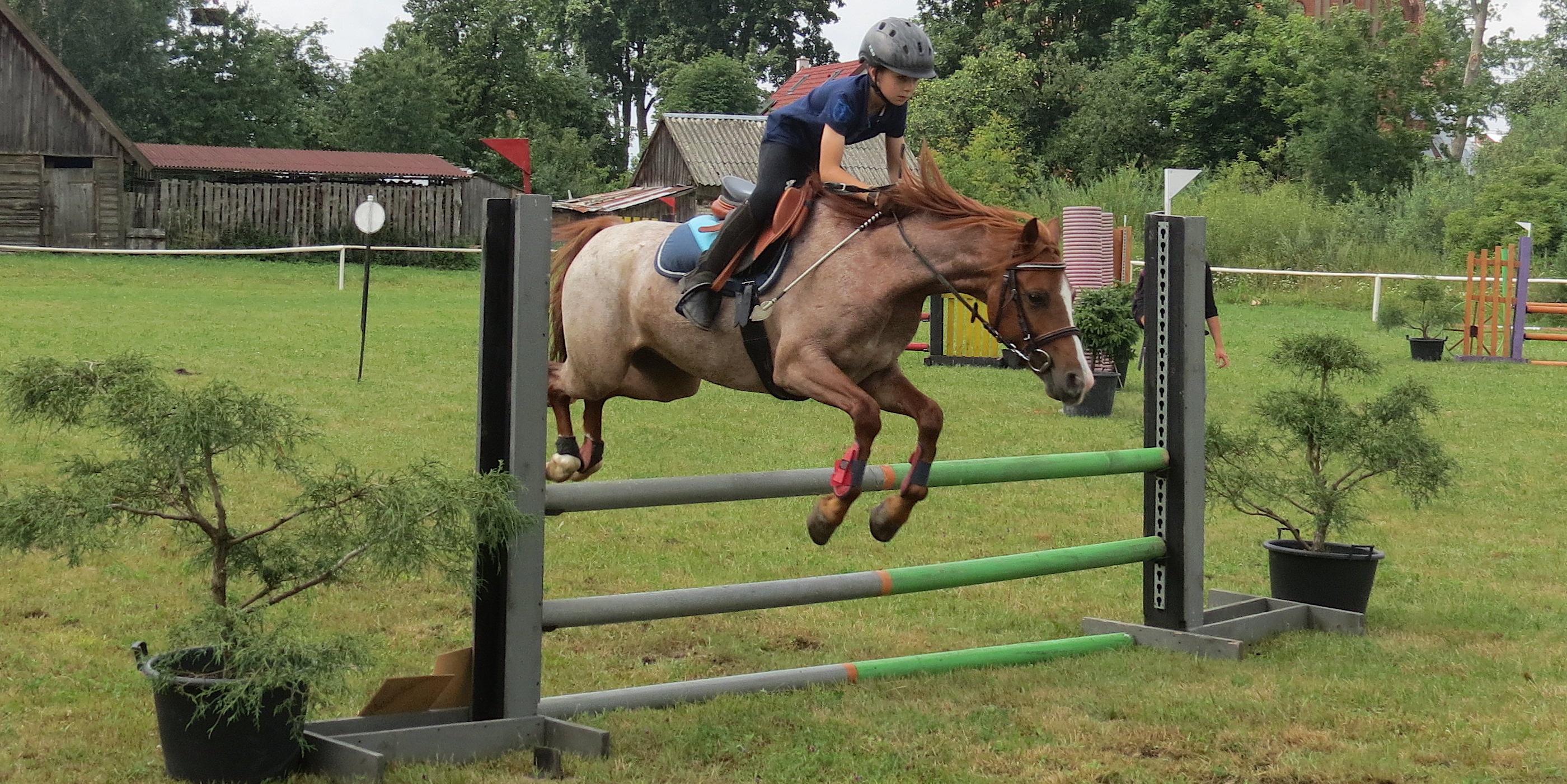 cad5d0125460c W Żegotach odbyły się po raz piąty Regionalne Zawody Jeździeckie w Skokach  Przez Przeszkody