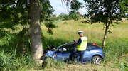 Ford rozbił się na drzewie