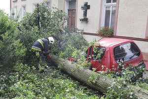 Drzewo spadło na samochód. Dużo utrudnień po burzy, która przeszła nad Olsztynem [ZDJĘCIA, VIDEO]