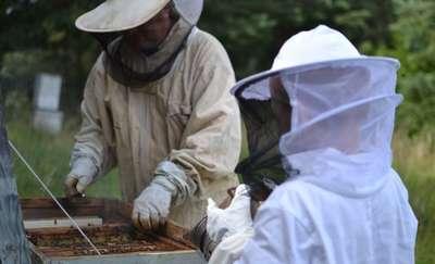 W Smolajnach chcą kształcić pszczelarzy