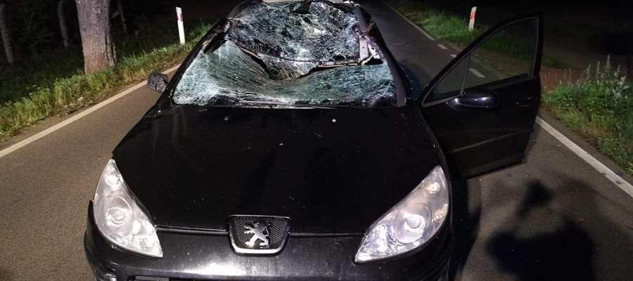 Siła uderzenia była tak duża, że zwierzę zginęło na miejscu. Auto natomiast zostało poważnie uszkodzone.