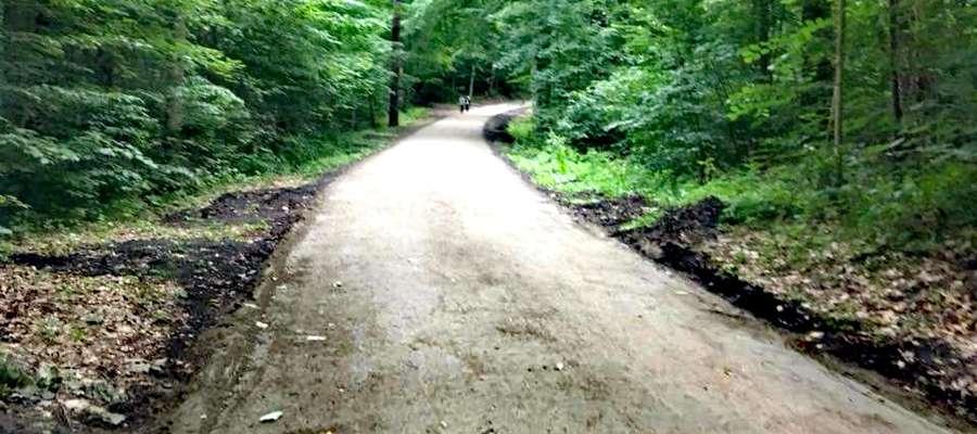 Betonowa droga w Lesie Miejskim