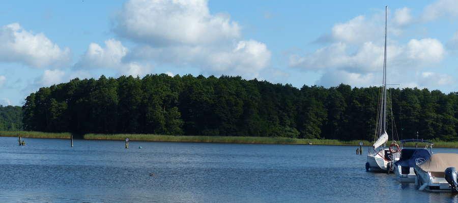 Zdjęcie jest ilustracją do artykułu — wyspa Wielka Żuława (jezioro Jeziorak), widok od strony południowej