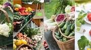 Uwaga rolnicy ekologiczni!