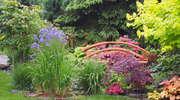 Ogród, który wprowadza w euforię