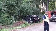 Pijany kierowca uderzył w drzewo. On i pasażer trafili do szpitala