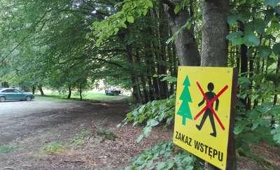 Uwaga! Zakaz wstępu do lasu przy Jeleniej Dolinie