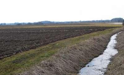 Program azotanowy - nowe obowiązki (i koszty) dla rolników