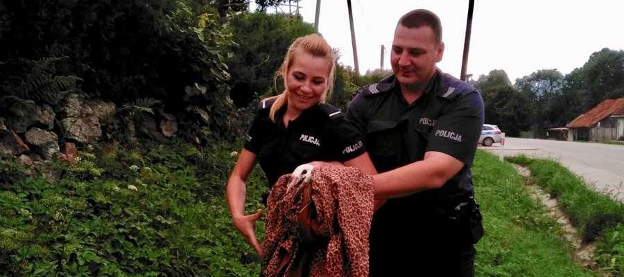 Sierż. szt. Krzysztof Wieczorek i st. post. Anna Wolanin pomogli rannemu bocianowi.
