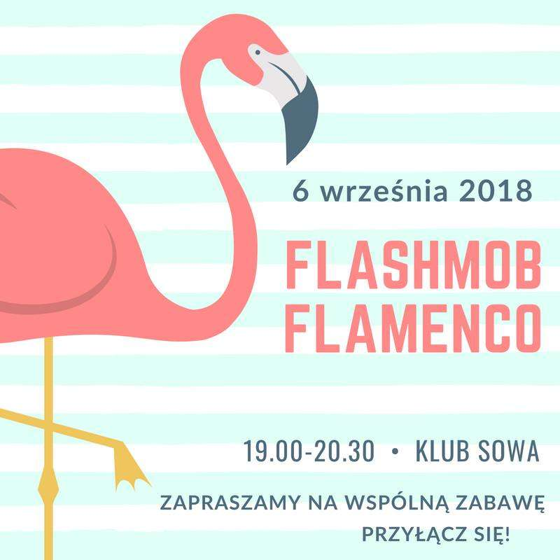 Flamenco w Olsztynie  - full image