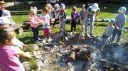 Perełki z grupy II obchodzą Dzień Przedszkolaka