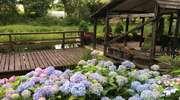 Ogród w zakolu rzeki