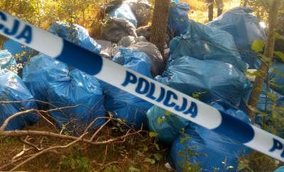 Wyrzucali śmieci do lasu — mandaty po 1000 zł dla 41-latka i 36-latka