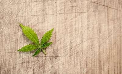 Uczeń połknął marihuanę?