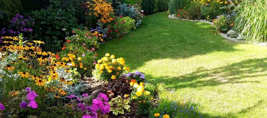 U Marysi w ogrodzie