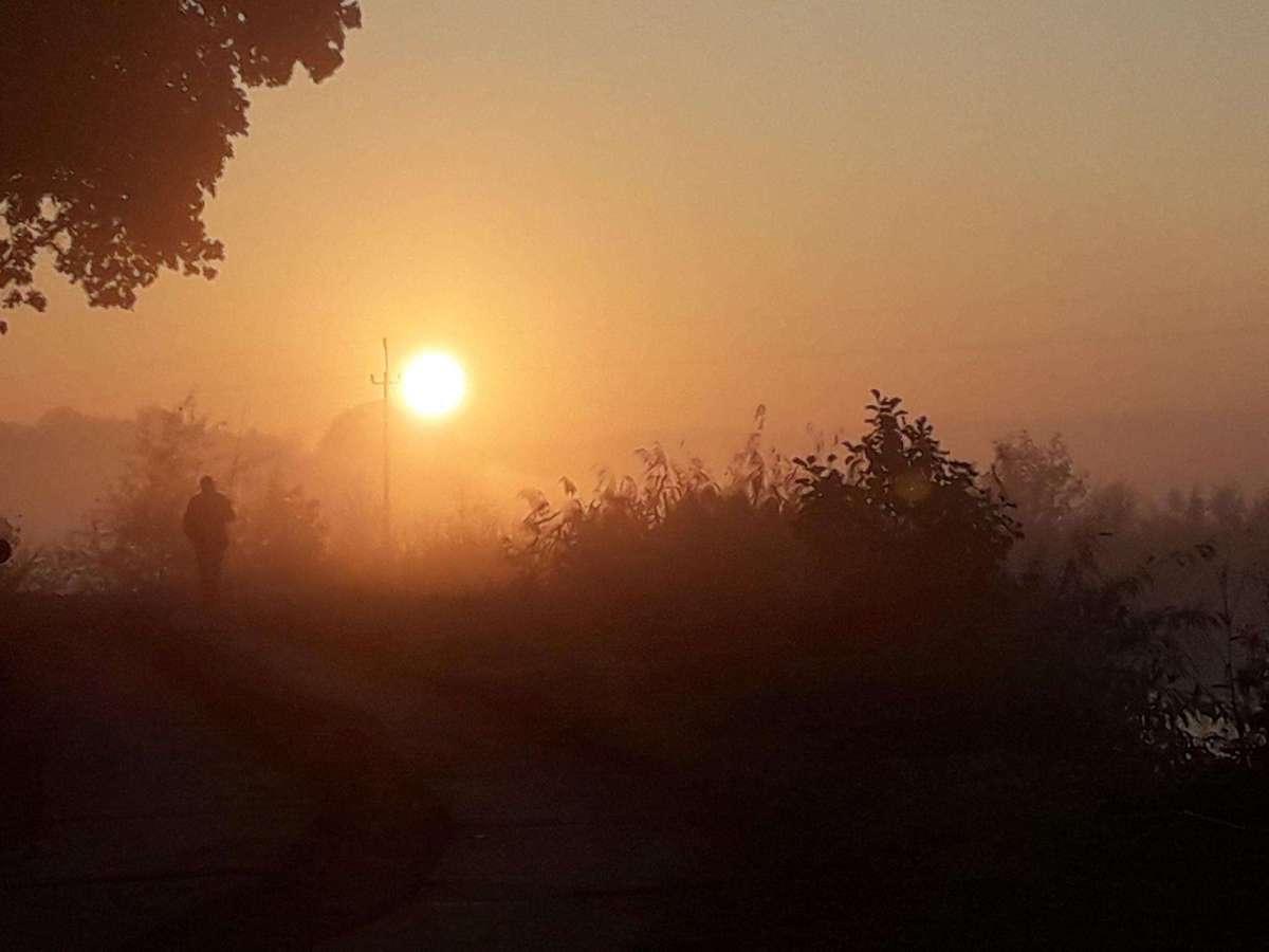 Poranek w Głomnie - full image