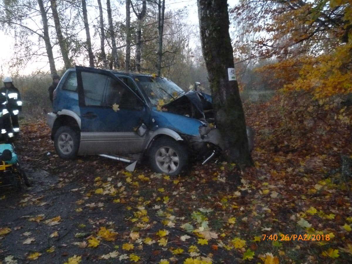 Uderzył w drzewo i trafił do szpitala - full image