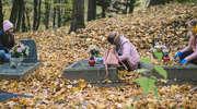 Posprzątali stare cmentarze na Wzgórzach Dylewskich [zdjęcia]