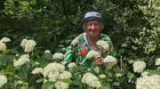 Ogród Babci Lucynki podbija serca internautów