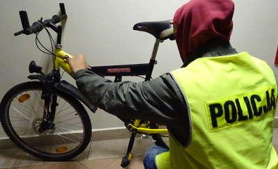 Kryminalni odzyskali skradziony rower. Pomógł im Dragon - policyjny pies tropiący