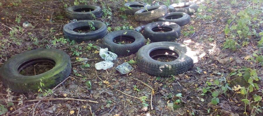 Śmieci w Gutkowie