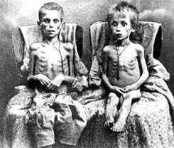 Wielki Głód w Wojewódzkiej Bibliotece Publicznej w Olsztynie - full image